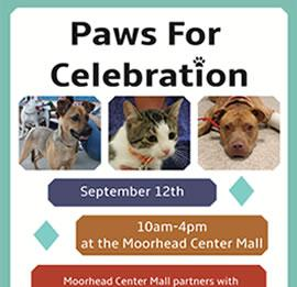 Paws for Celebration